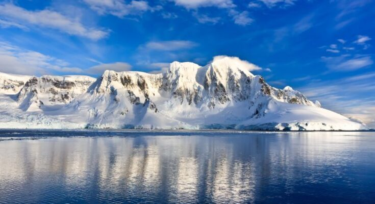 Who Discovered Antarctica?